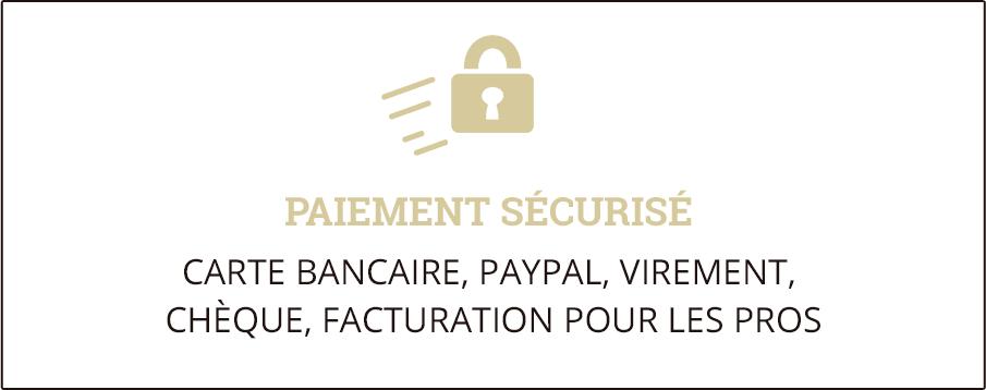 Paiement sécurisé : Visa, Master Card, PayPal, Virement, Chèque, Facturation pour les PROs en compte